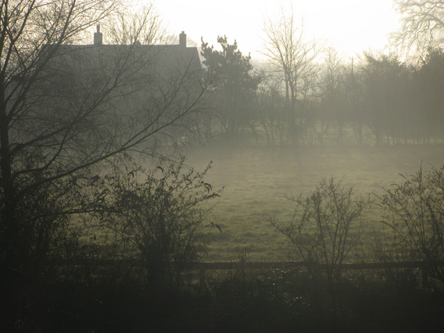 sunshine and mist by kate bailward