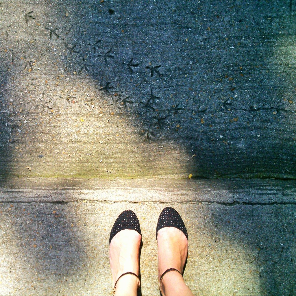 feet, light, shade, kate bailward